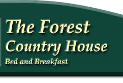 The Forest Cottages Self Catering Accommodation